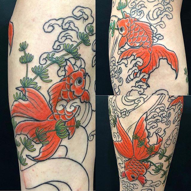 #金魚 #goldfish ...#tattoo #reikotattoo #studiokeen #japan #nagoyatattoo #tokyotattoo #irezumi #タトゥー #刺青 #名古屋 #大須 #矢場町 #東京